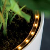 Plantenbak LED Ring