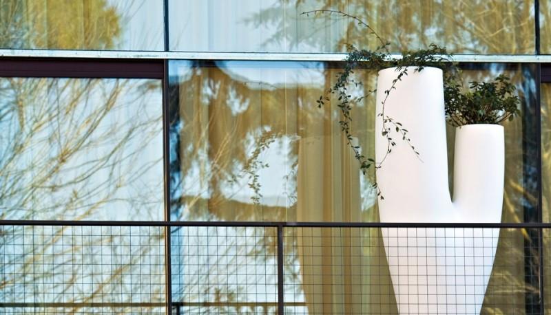 SerraLunga Missed Tree-II