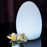 smart-green-egg - EGG