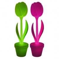 TULIP XL® Light