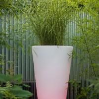 Bloemvaas Liscio Siena LED