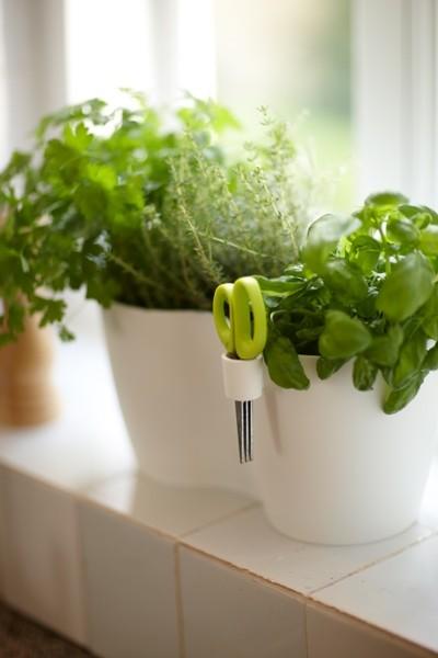 Elho Brussels Herbs