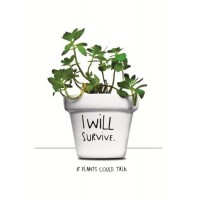 i-will-survive-plantpot - VD-WSWH