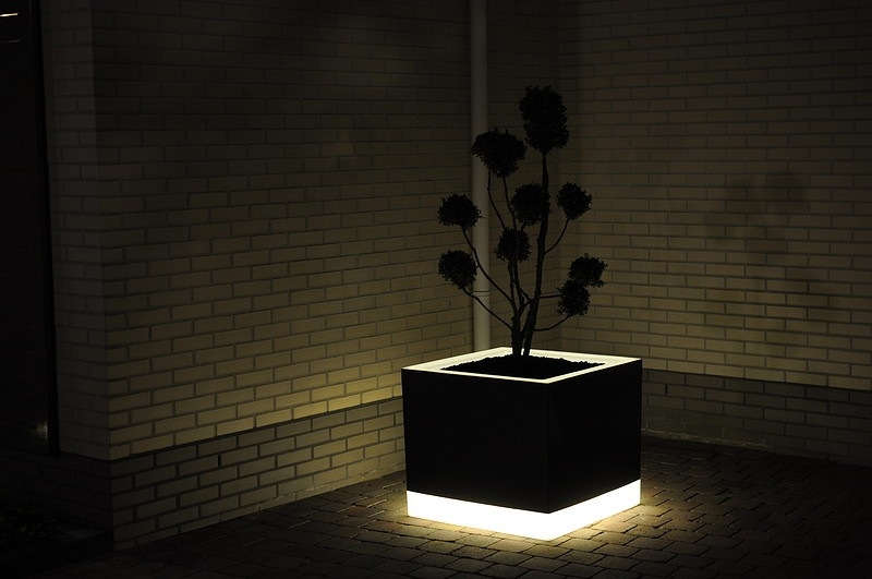 Bloempot Met Licht. Finest Mooie Licht Groene Planten Pot With ...