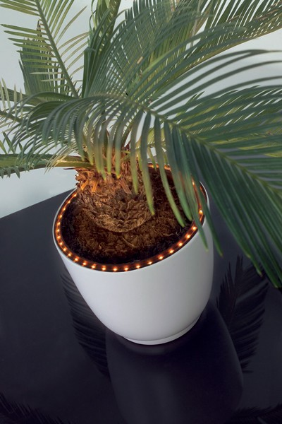 Plantenbak LED Ring
