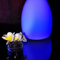 Smart & Green Egg