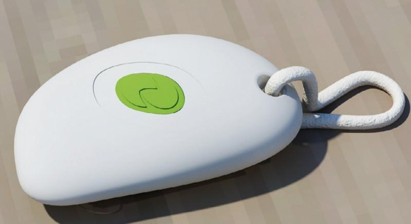 Smart & Green Pebble Remote Control