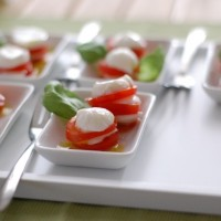 13delige-fingerfood-set - WD135