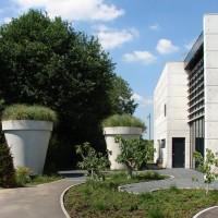 betonnen-bloempot-xxl-300