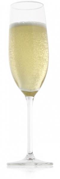 Vacu Vin Champagneglazen set van 2